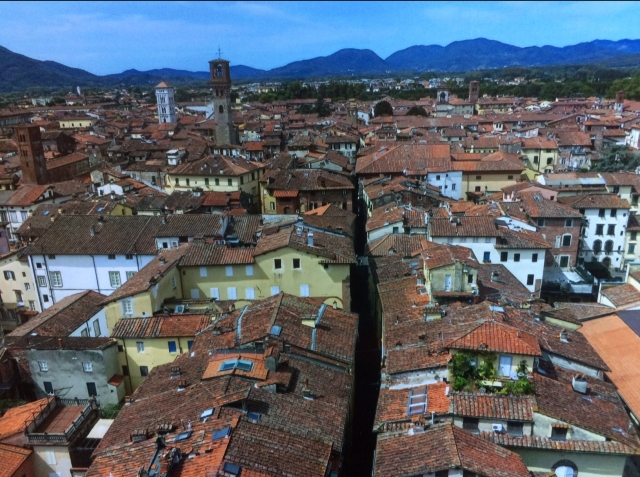 roofs-of-italy.jpg