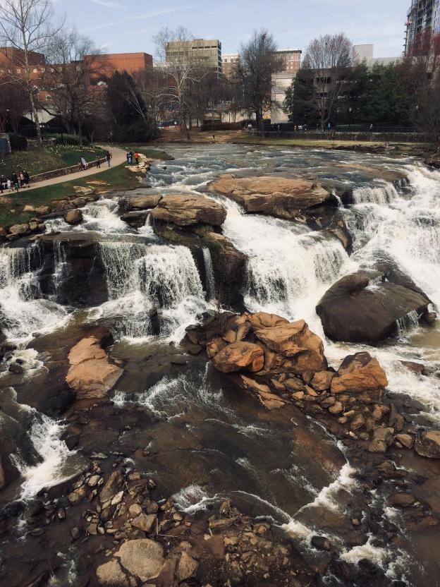 the falls at reedy